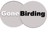 Gone Birding- Birding/ Video Production services